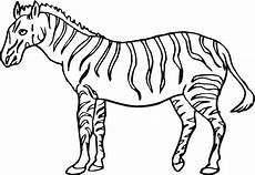 Zebra Template Printable Free Printable Zebra Coloring Pages For Kids