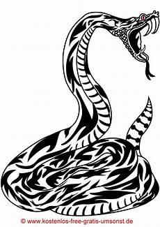 Ausmalbilder Ninjago Schlange Kostenlos Schlange Zum Ausmalen Mandalanoel Store