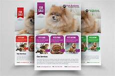 Pet Flyer Pet Shop Business Flyer Template Flyer Templates On