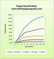 Spaniel Growth Chart Puppy Development Stages With Growth Charts And Week By