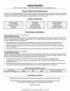 Cv Format For Marketing Executive Create Professional Cv Format For Marketing Manager