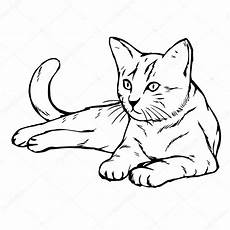 dibujos de gatos dibujos dibujo gato dibujado a mano gato gatito