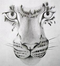desenho feito a grafite criatividade sem