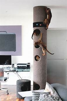 Modern Cat 25 Cat Trees And Climbers To Make Your Pet Happy Digsdigs