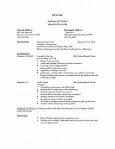 Professional Cv Forms Free Resume Templates Professional Cv Format Printable