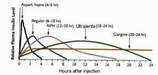 Lantus Peak Times Chart Canine S With Diabetes Mellitus Information On Insulin