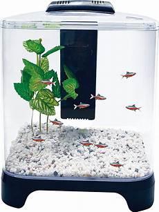 5 Gallon Tank Light Penn Plax Betta Fish Tank Aquarium Kit With Led Light