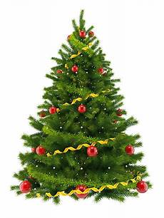 Free Images Of Christmas Trees Best Christmas Tree Stock Photos Pictures Amp Royalty Free