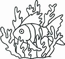 malvorlagen zum ausdrucken ausmalbilder algen kostenlos 2