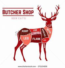 Meat Processing Chart Deer Meat Cuts Elements Names Color Stock Vector 271124906