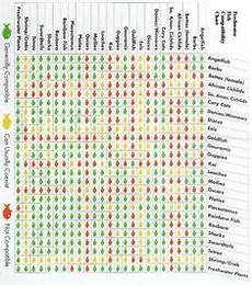 Red Shark Compatibility Chart Freshwater Shrimp Compatibility Chart Fish Chart