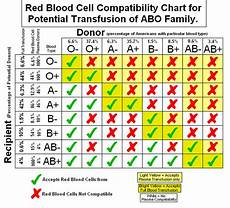 Blood Type Heredity Chart The A Amp P Student Blood Types