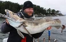 stor fisk toppfiskene i 2017 en aldri s 229 liten 229 rsoppsummering