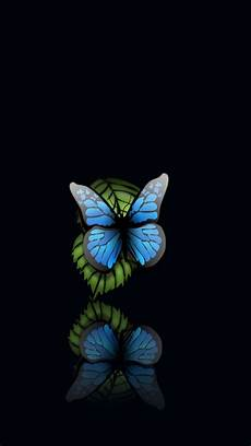 Butterfly Wallpaper For Iphone 6 Plus by Blue Butterfly Black Background Iphone 6 Plus Hd Wallpaper