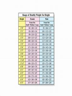 Weight Chart Free 7 Height And Weight Chart Examples Amp Samples In Pdf