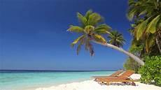 beach ambience on tropical paradise island maldives