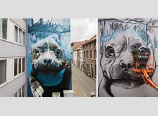 Giant 4 Story Mural Of A Diving Dog Adds Colour To A