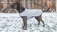 cool coats for dogs wood tutorial how to make a coat craft gossip bloglovin