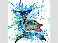 Funny Dolphin With Watercolor Splash Textured Stock