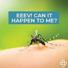 Eee Virus Eeev Can It Happen To Me Employee Safety And Health