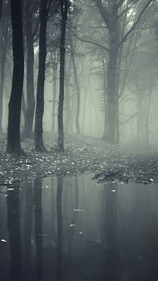 creepy iphone wallpaper creepy forest wallpaper free iphone wallpapers