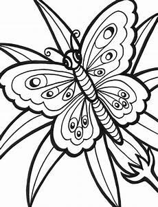 Ausmalbilder Schmetterling Kostenlos Ausdrucken Butterfly Coloring Pages
