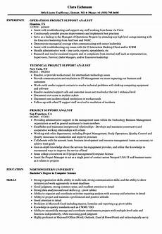Project Analyst Resume Sample Project Support Analyst Resume Samples Velvet Jobs