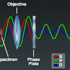 Phase Contrast Microscope Light Source Optical Pathways In The Phase Contrast Microscope