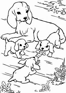 hunde ausmalbilder kfzversicherungonline info