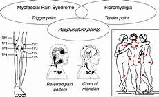 Acupuncture Therapy Mechanism Of Action Efficacy And