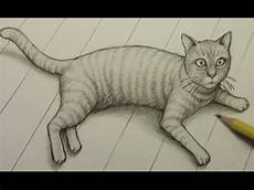 Cat Drawing Images How To Draw A Cat Youtube