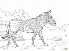 97 inspirierend pferde ausmalbilder zum drucken das bild