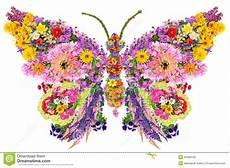Mariposas Y Flores Mariposa De Las Flores Del Verano Foto De Archivo Imagen