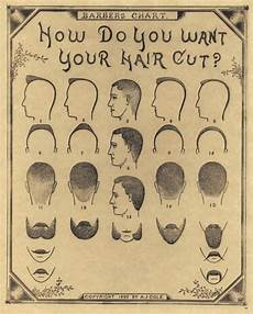 Barber Shop Haircut Styles Chart 1890 Antique Barber Shop Haircut Beard Mustache Chart