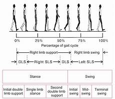 Gait Cycle Approach To The Patient With Gait Disturbance And