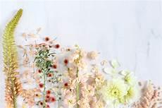 Minimalist Aesthetic Flower Wallpaper by Flower Aesthetic Computer Wallpapers Top Free Flower