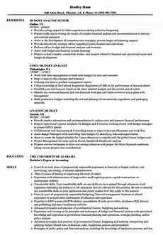 Sample Program Analyst Resume Budget Analyst Resume