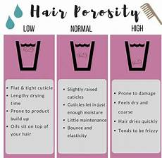 Hair Porosity Chart Pin On Places To Visit