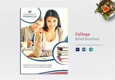 Education Leaflet Design College Bi Fold Brochure Design Template In Word Psd