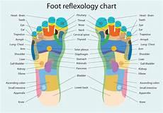 How To Do Reflexology Foot Chart Foot Reflexology Chart Download Free Vectors Clipart