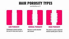 Hair Porosity Chart Hair Porosity Types