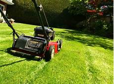 Yard Mowing Service Mowing The Lawn Be Sure To Scoop The First