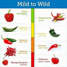 Chili Heat Chart 17 Best Images About Pepper Knowledge On Pinterest Nice