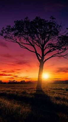 Hd Background Images Sunset Scenery Wallpapers Hd Wallpapers Id 20047