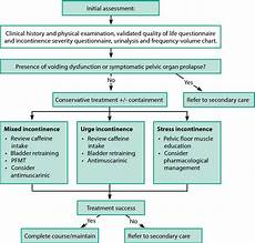 Continence Assessment Chart The Conservative Non Pharmacological Management Of