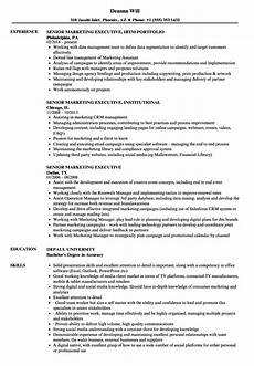 Sample Resume For Marketing Executive Position Senior Marketing Executive Resume Samples Velvet Jobs