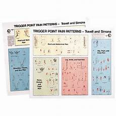 Travell Trigger Point Chart Trigger Point Patterns Chart Poster Set Of 2