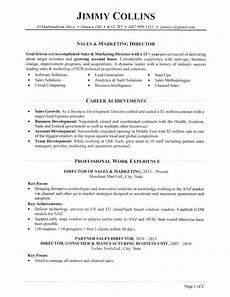 Director Of Sales Resume Sales Director Resume
