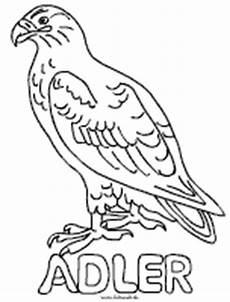 Malvorlagen Kinder Adler Ausmalbilder Adler Ausmalbilder