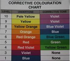 Redken Hair Toner Color Chart Violet Base Hair Colour Hair Color Wheel Color